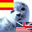 English - Español, Español - English